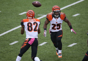 Fantasy Football Marvin Jones